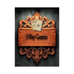3 way gemini