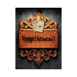 Voyage Full speed Ace